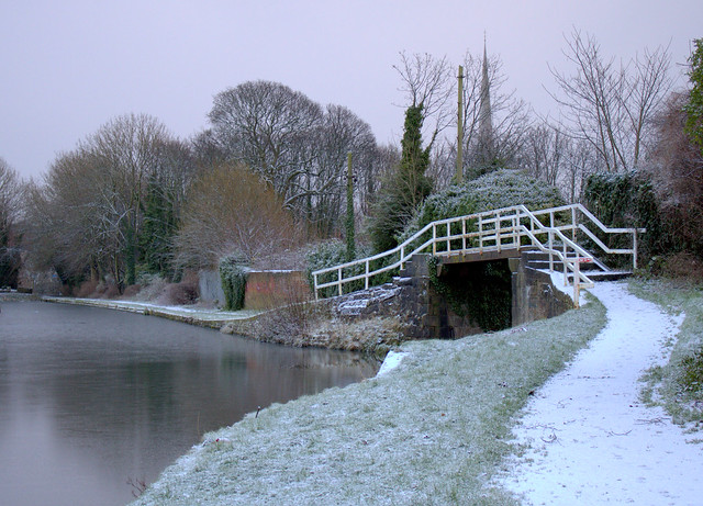 Icy down by the canal