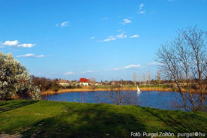 Kórógy-tó tavasszal