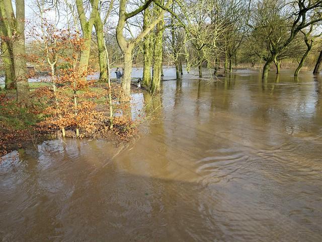 Flooded Haslam Park in Preston