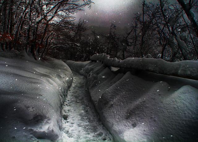Camino nevado/Snowy road