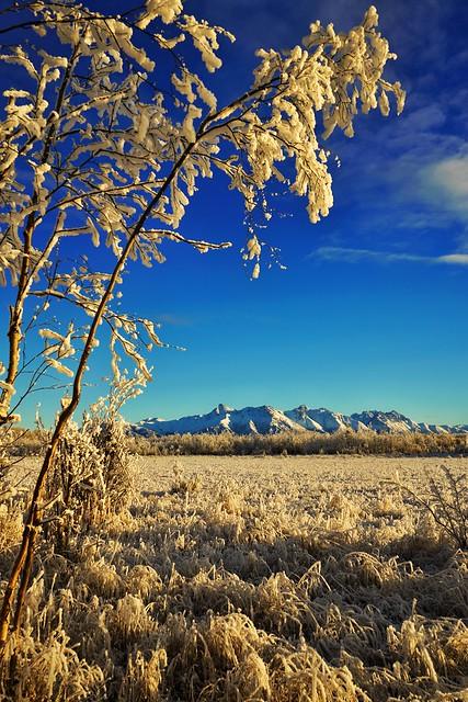 Matanuska Peak in Frost