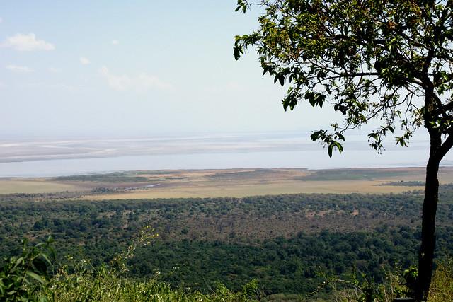 037 Lake Manyara Nationalpark