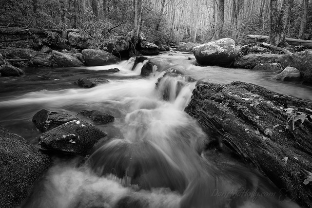 201211_LCP_0031
