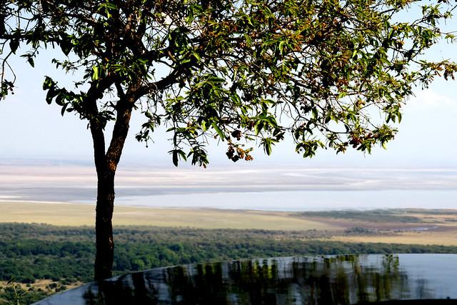 036 Lake Manyara Nationalpark