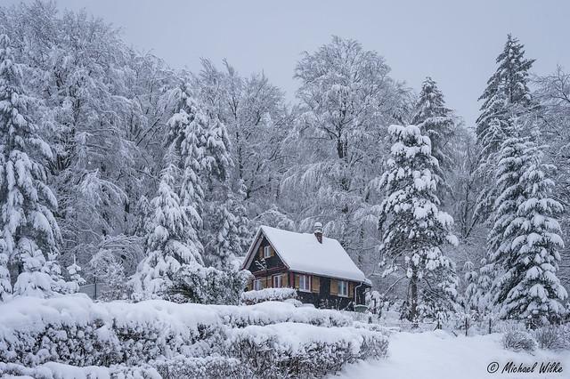 Fest im Griff des Winters