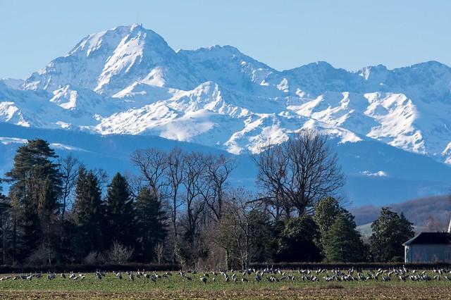 Lac de Puydarrieux et alentours (Hautes-Pyrénées)