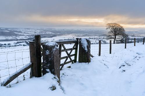 snow snowscapes landscape sunrise landscapephotography biddulphmoor winter winterlandscape sonya7iii tree uk uklandscape winterwonderland