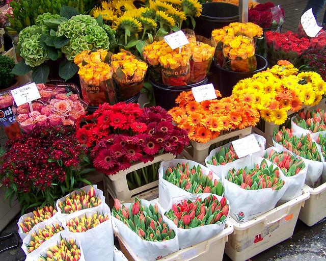 Mercado de las flores, un imperscindible que visitar en Amsterdam