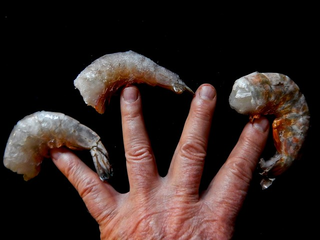 The Fine Art of Fingertip Shrimp Balancing