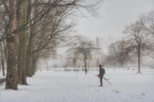 valterb view nikond90 nikkor montreal public park landscape morning fog snow trees people white atmosphere