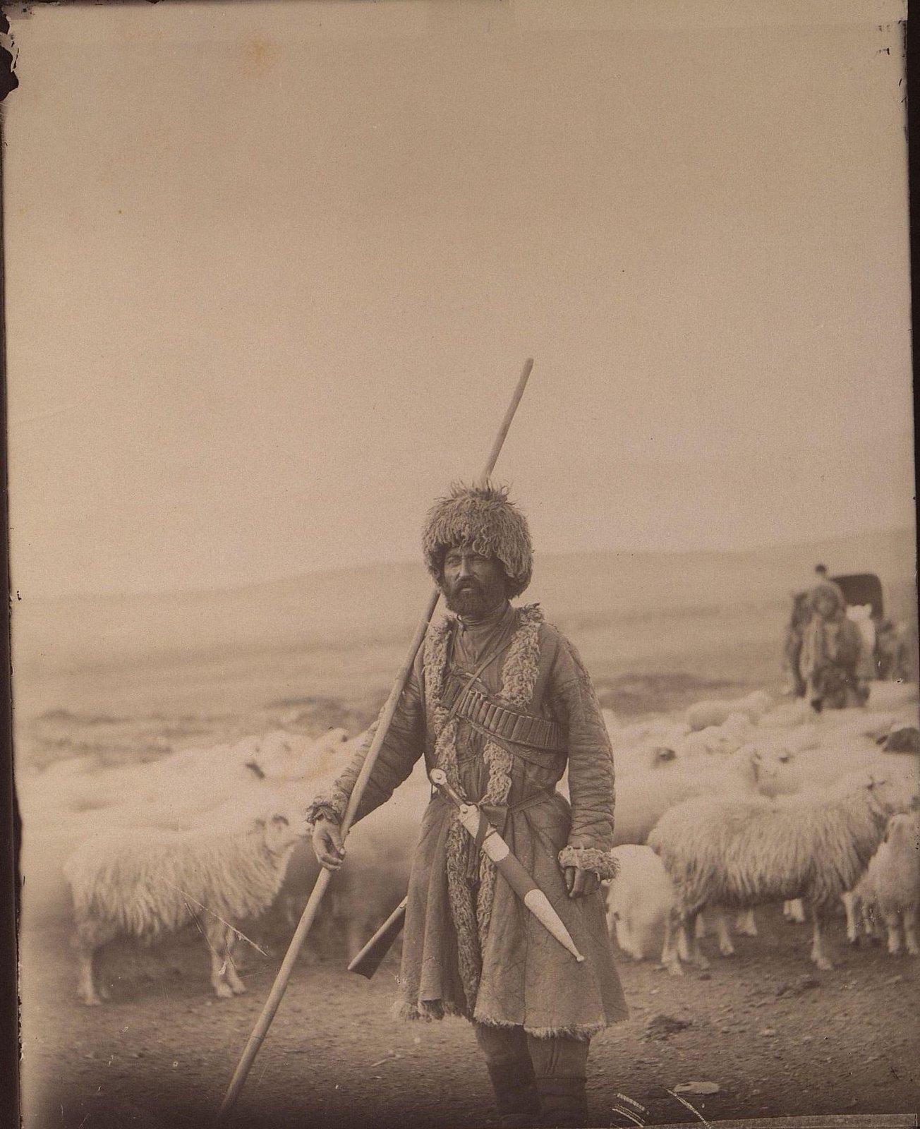 Окрестности Тифлиса. Чабан (пастух-татарин)