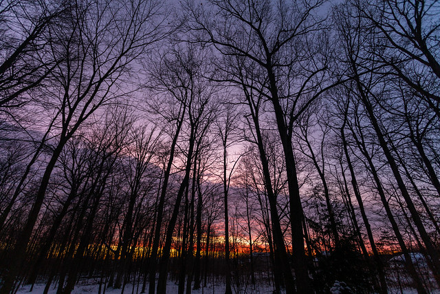 Sunset January 20, 2021
