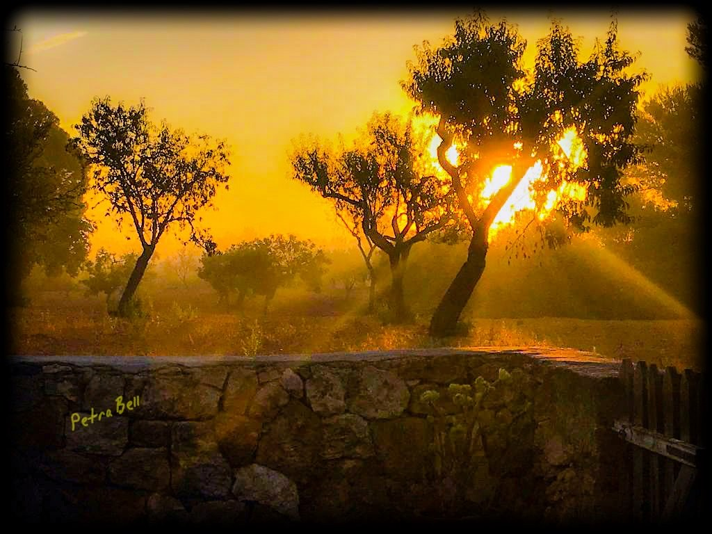 Impressions Mallorca 💕