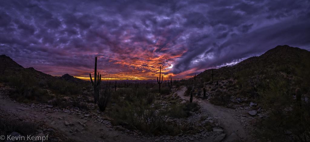 Desert Sunset - 20210118_1180428-Pano [explore 20210121]