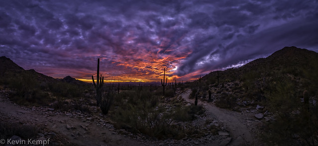 Desert Sunset - 20210118_1180428-Pano [explore 20210121]