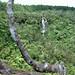 Cascade Chamarel ou des Galets
