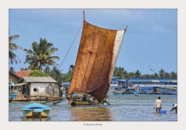 Les « oruwas » rentrent au port