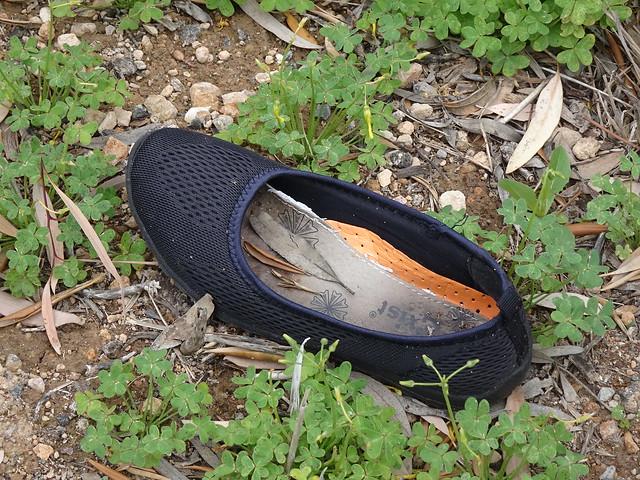 Lost Left Shoe