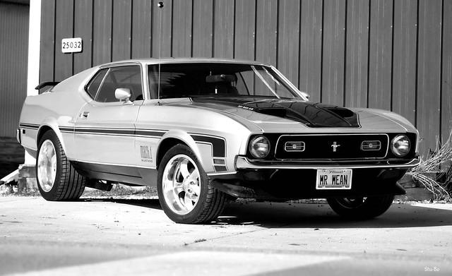 random Mustang pic...