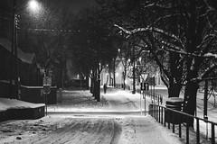 Snowing | Kaunas