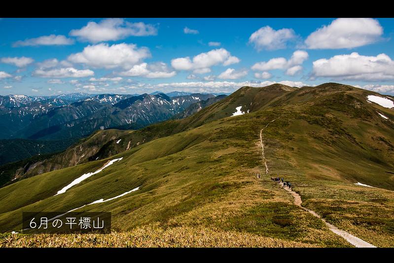 6月の平標山