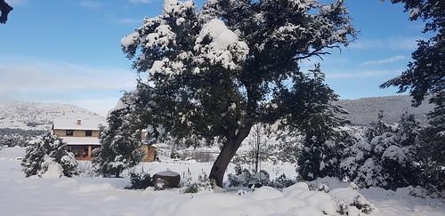 Nieve Vista Carrasca 7