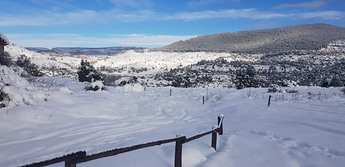 Nieve Ext. Cruz 10