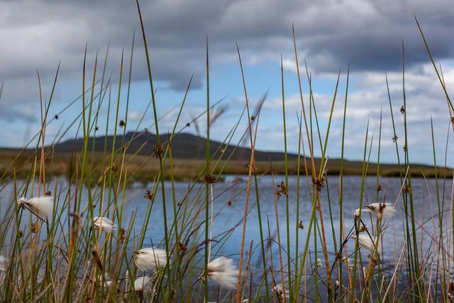 Lochs & Landscapes, Scotland