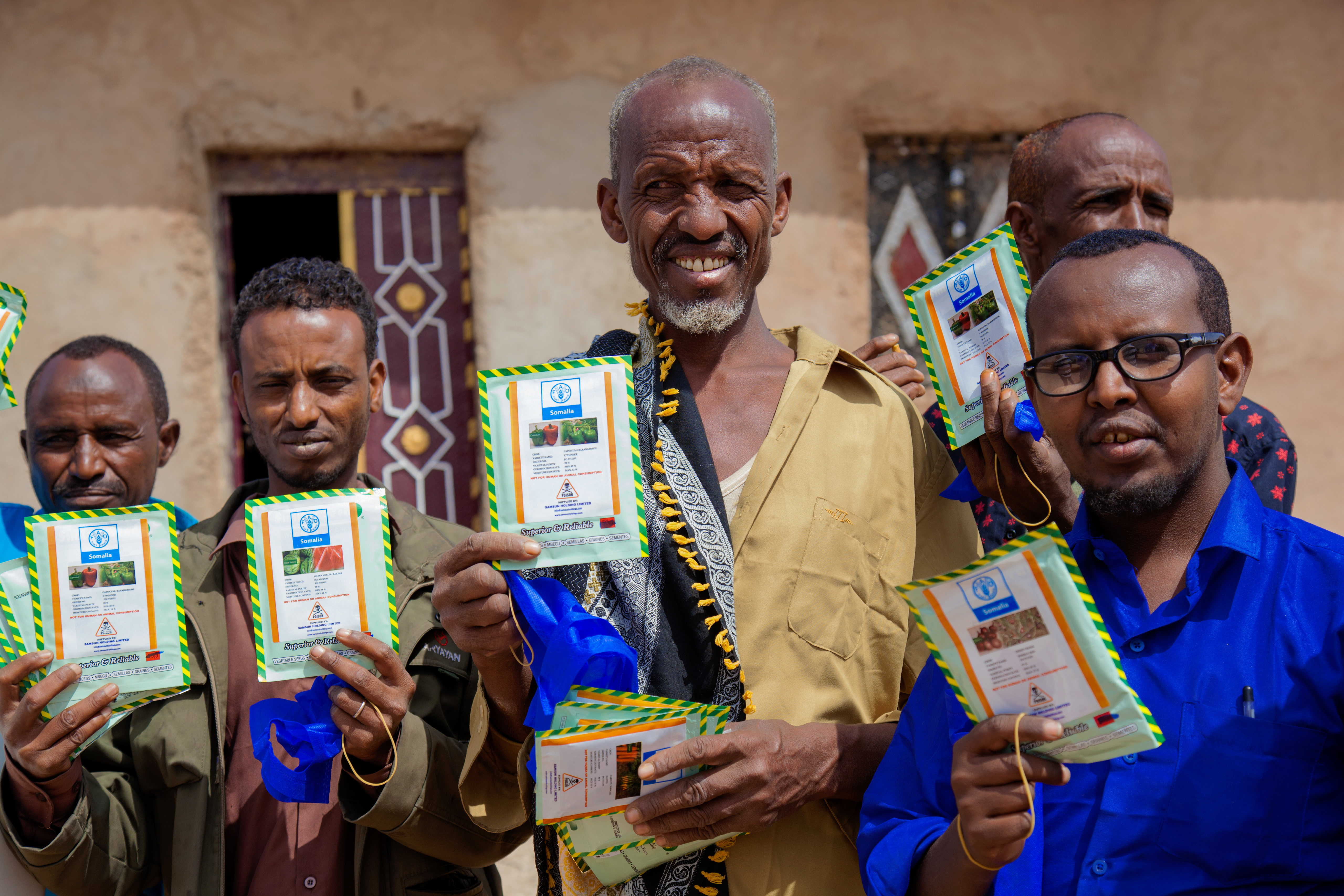 Desert locust livelihood support in Somaliland