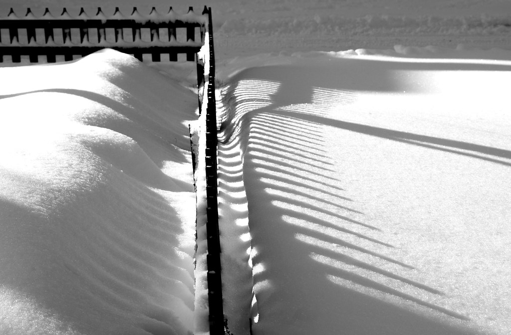 fence2_snow_bw