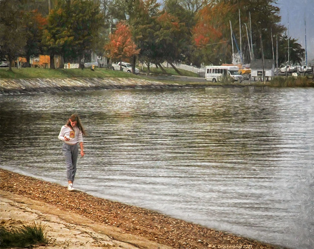 In Search of Beach Treasures on the Tred Avon River in Oxford MD