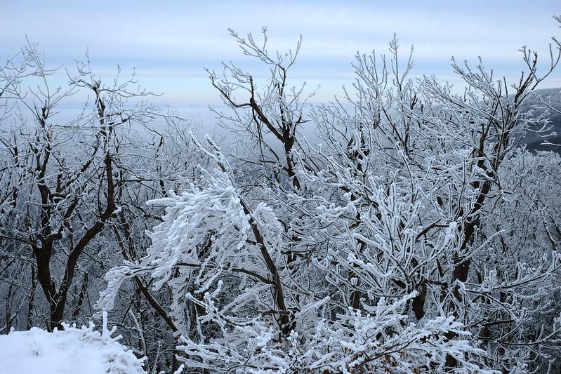 Snow in the Börzsöny Mountains, Hungary