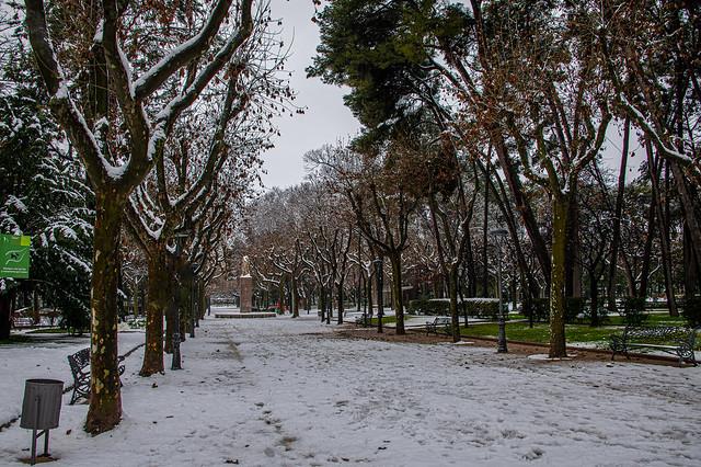 DBL_0229P Parque Miguel Servet