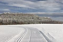 Aktuálně: Po jarním počasí se v sobotu opět vrátí zima