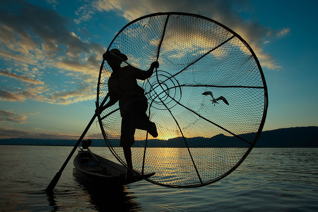 Catch of the day ~ Myanmar