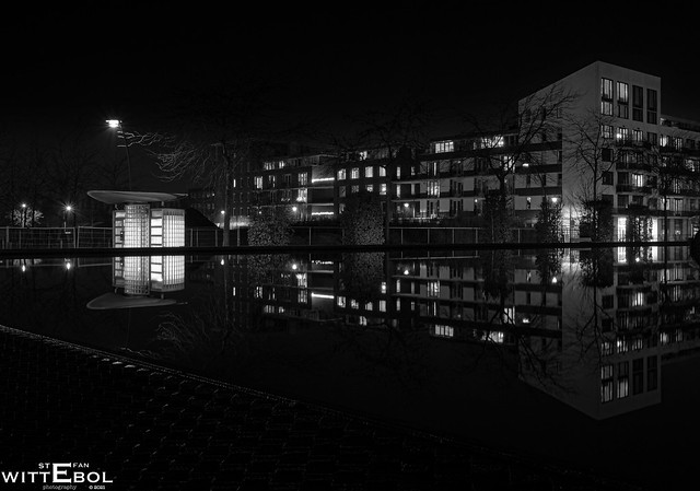 Reflection in black and white