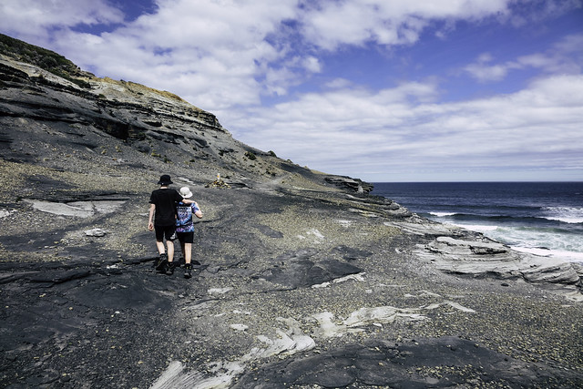 Brothers in arms, South Cape Bay walk, Southwest National Park, Tasmania-18