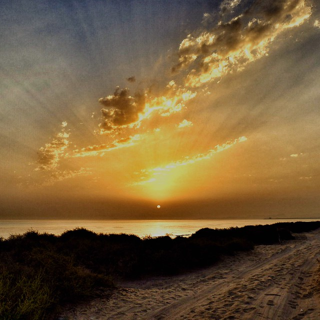 """""""Another sunrise, another new beginning."""" - Jonathan Lockwood Huie"""