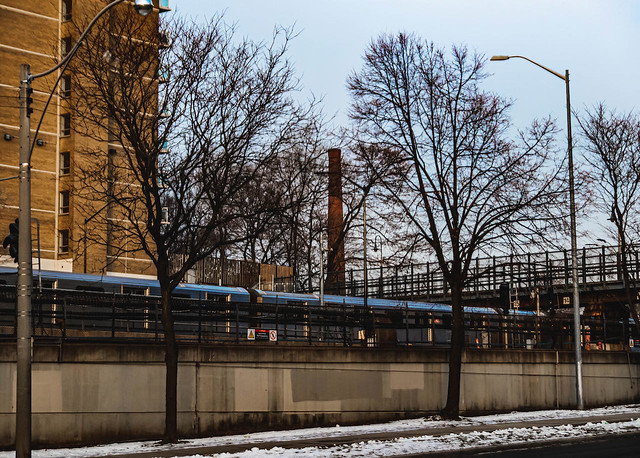 Trees and trains 1