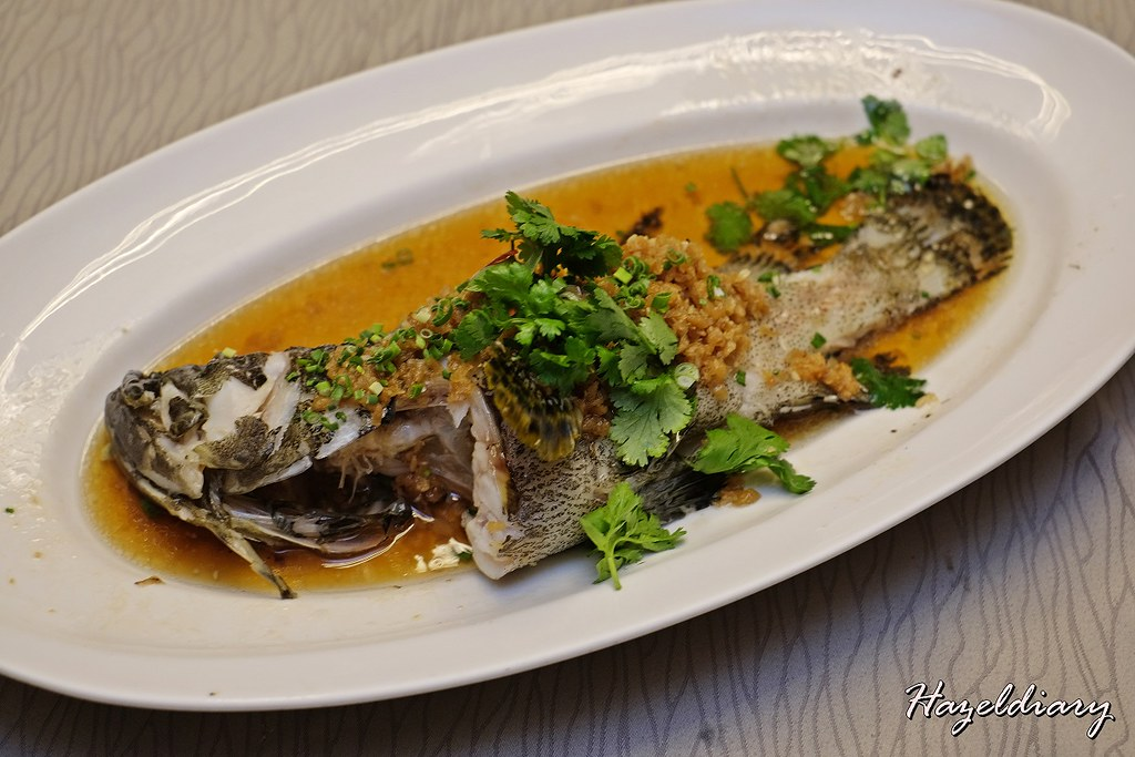 JUMBO Seafood-Live Garoupa Steamed with Preserved Radish