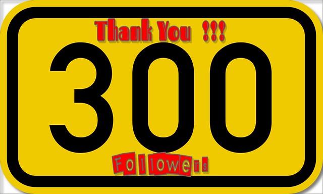 ♥♥ Thank You !!! Merci !! ♥♥