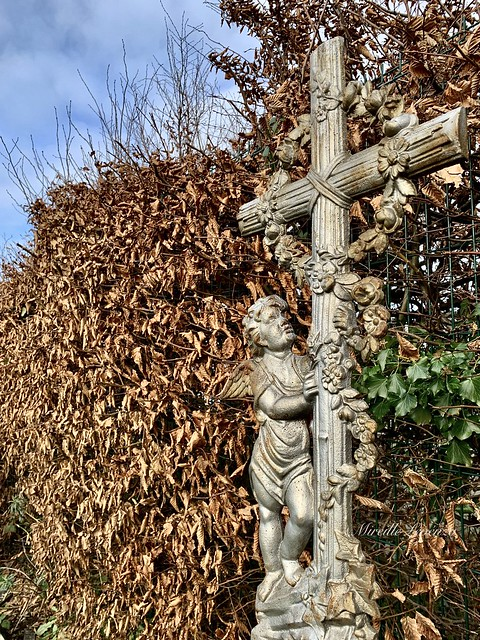 FF - Fence & cemetery