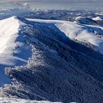 Saioa Summit