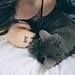 day 21 - little murder cat is sweet when she's sleeping