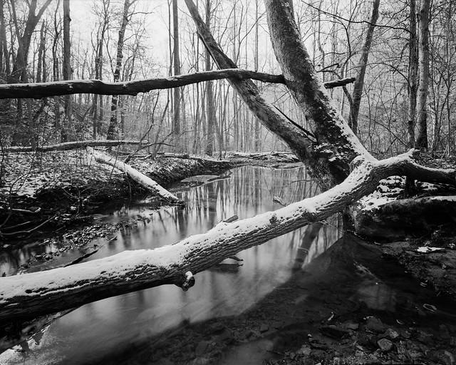 Old Mill Creek, Christmas Rocks