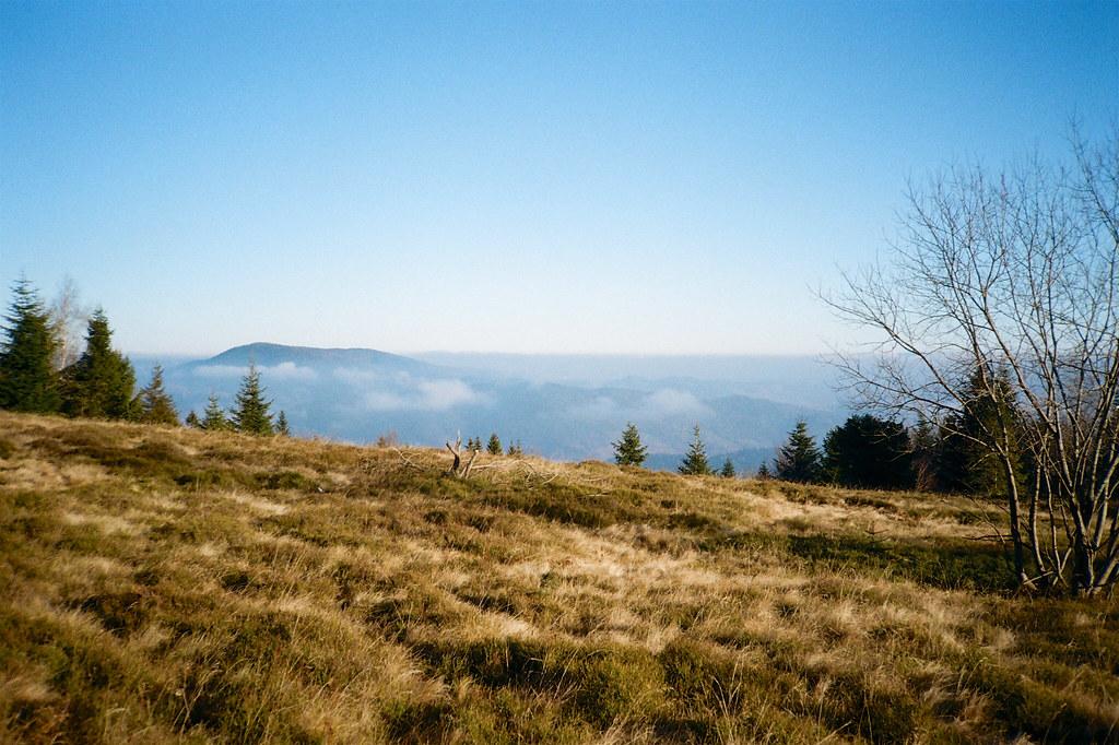 Widok z Kiczory Kamienieckiej na wschód
