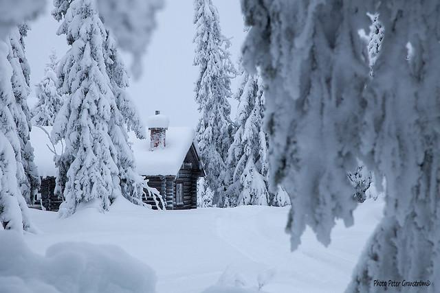 Stenträsk cottage!