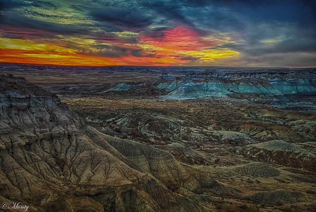 Petrified Forrest, Arizona (exolore  (22Jan01)