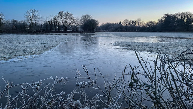 Frosty Morning - ice reflection