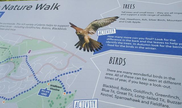 Brizlincote Nature Walk information